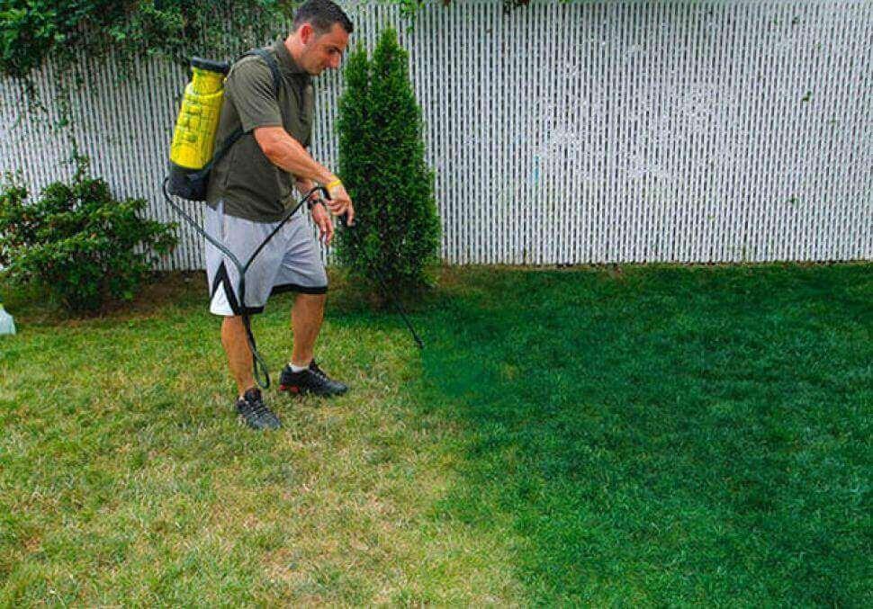 شركة تنظيف الحدائق المنزلي